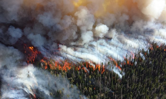 Wildfires, raging and costly. (U.S. National Parks Service, CC BY 2.0)