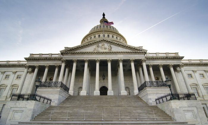 U.S. Capitol building in Washington, D.C. (Rrodrickbeiler/iStock)