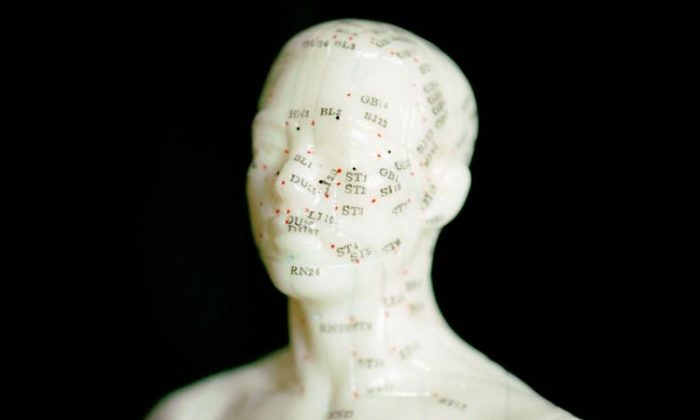 A model used for the study of acupuncture points. (Photos.com)