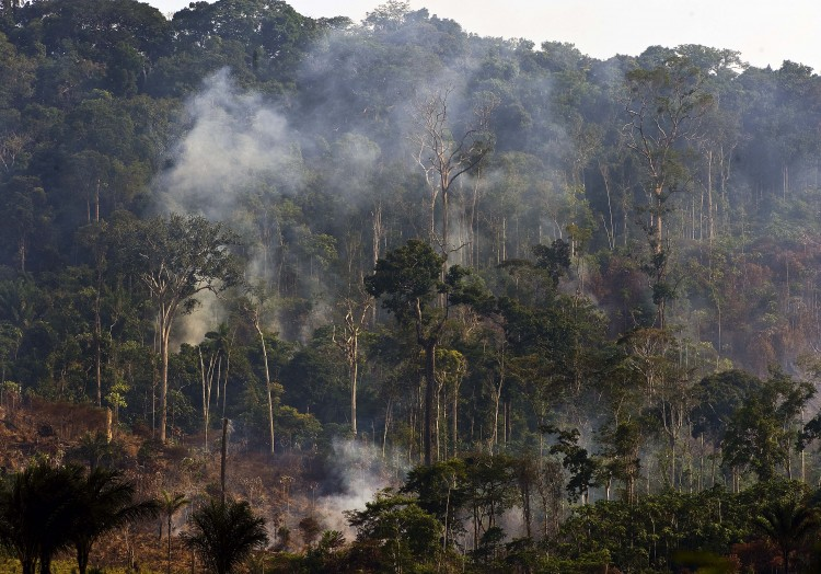 Trees of the Amazon rain forest burn in northern Brazil to clear land for cattle raising. New research on the savannas of French Guiana has discovered indigenous people farmed the area for hundreds of years without using fire. (Antonio Scorza/AFP/Getty Images)