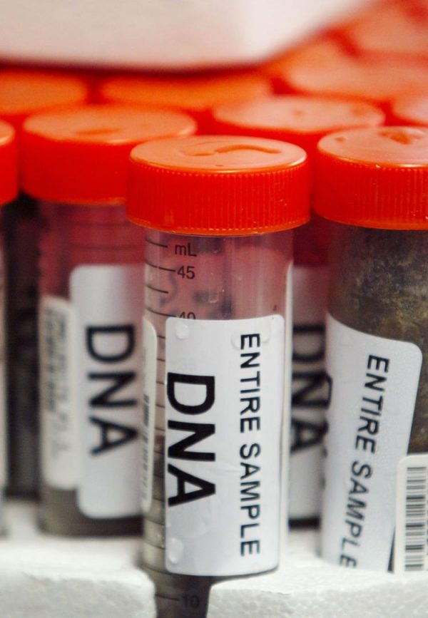 California authorities are defending a law that requires police to collect DNA samples of all convicted felons.