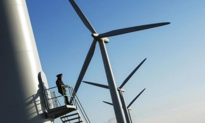 The Federal Government is making changes to the renewable energy target scheme, but questions remain about how it will operate into the future. (Adrian Dennis/AFP/Getty Images)