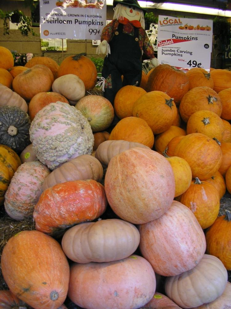 Pumpkins Galore! (Gisela Sommer/The Epoch Times)