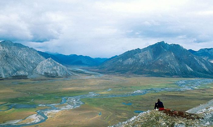 The Upper Sheenjek Valley of the Arctic National Wildlife Refuge in Alaska, on Aug. 30, 1999. (Steven Chase/USFWS/ Getty Images)