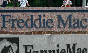 Fannie, Freddie Shareholders Urge Supreme Court to Find Conservator Unconstitutional