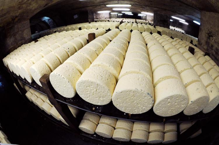 Picture of Roquefort cheeses taken on January 16, 2009 in a cellar at Roquefort-sur-Soulzon, southern France.  (Remy Gabalda/AFP/Getty Images)