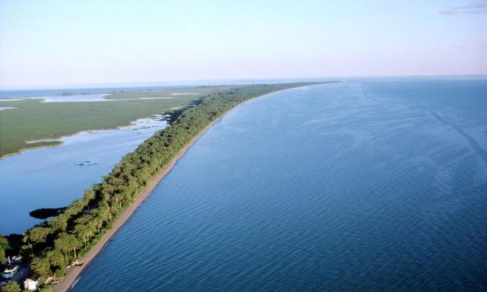 Aerial view of the coastline of Lake Erie, Ontario, Canada. A rapid response team is trying to prevent the Asian carp from entering the Great Lakes where it could cause ecological and economic damage. (photos.com)