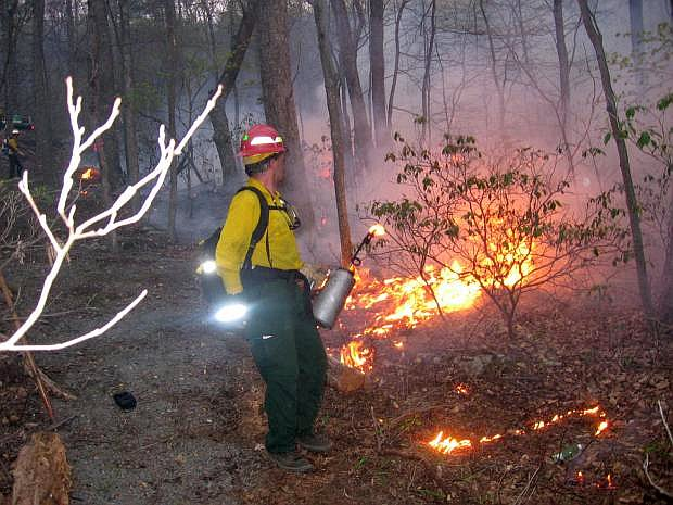 Firefighters conduct a controlled burn to battle wildfires