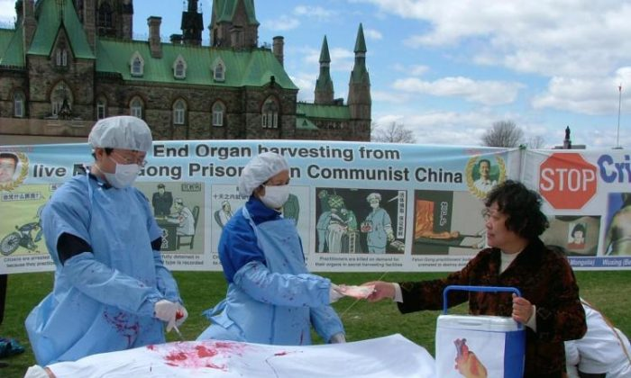 Falun Gong practitioners reenact a scene of organ harvesting in China. (Xiaoyan Sun/The Epoch Times)