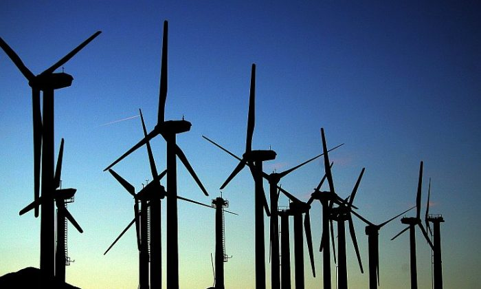 Giant wind turbines near Palm Springs, Calif. (David McNew/Getty Images)