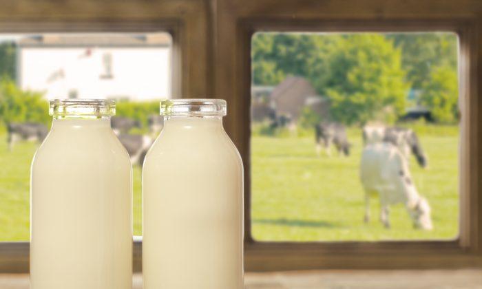Two bottles of milk. (Chris_Elwell/iStock)