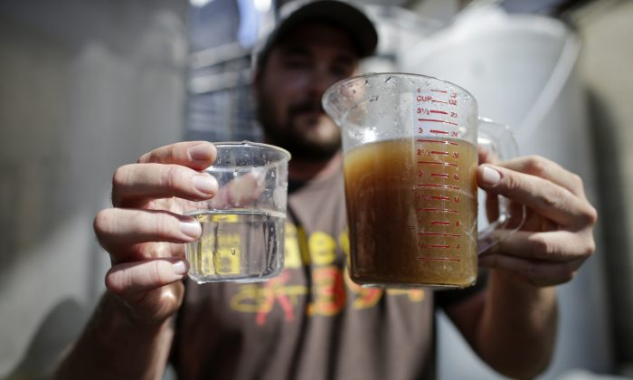 Charlie Arnold holds a container of non-potable water before it is treated, right, and after, left, at Stone Brewing Co. on Wednesday, Sept. 30, 2015, in Escondido, Calif. (AP Photo/Gregory Bull)