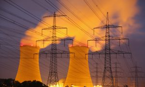 Nuclear Power Plants in the Age of Cyberterrorism