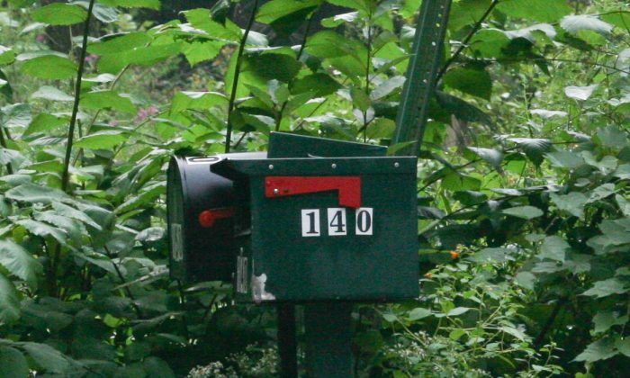 The mailbox at 140 Galley Hill Road in Cuddebackville on Aug. 25, 2015. (Holly Kellum/Epoch Times)