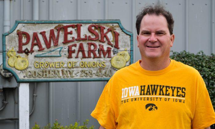 Chris Pawelski at the Pawelski Farm in Goshen on Sept. 28, 2015. (Yvonne Marcotte/Epoch Times)