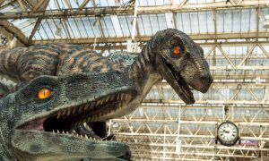 Hot or Not: Were Dinosaurs Warm-Blooded?