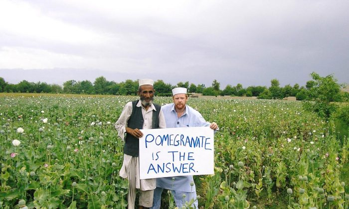 During his first visit to Afghanistan in 2007, James Brett  walked into a poppy field to convince a farmer to switch to pomegranates. (Courtesy of Plant For Peace)