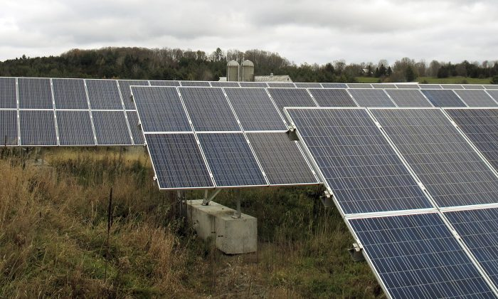 Solar panels that are part of a 100-kilowatt net metered project stand in a field on the McKnight Farm in East Montpelier, Vt., on Oct. 23, 2015. In 2014 Gov. Peter Shumlin signed a law at the farm which more than tripled the amount amount of electricity that can be sent to the electric grid from such projects. The amount of electricity being produced in the state by small net metered projects is growing faster than expected, and many utilities are nearing the cap established by the law. (Photo/Wilson Ring)