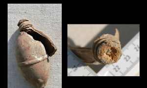 Ground Hog Excavates Mysterious Artifact in Pennsylvania: Ancient Grenade?