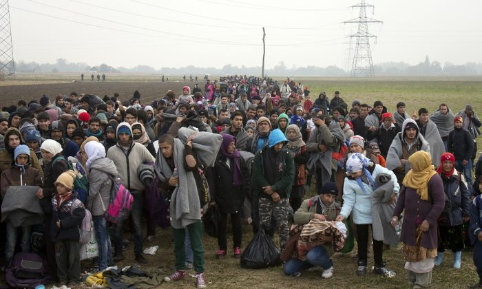 Migrants move through fields after crossing from Croatia, in Rigonce, Slovenia, on Oct. 27, 2015. The European Union is lashing member countries for dragging their feet on providing funds and experts to help manage Europe's biggest refugee emergency in decades. (AP Photo/Darko Bandic)