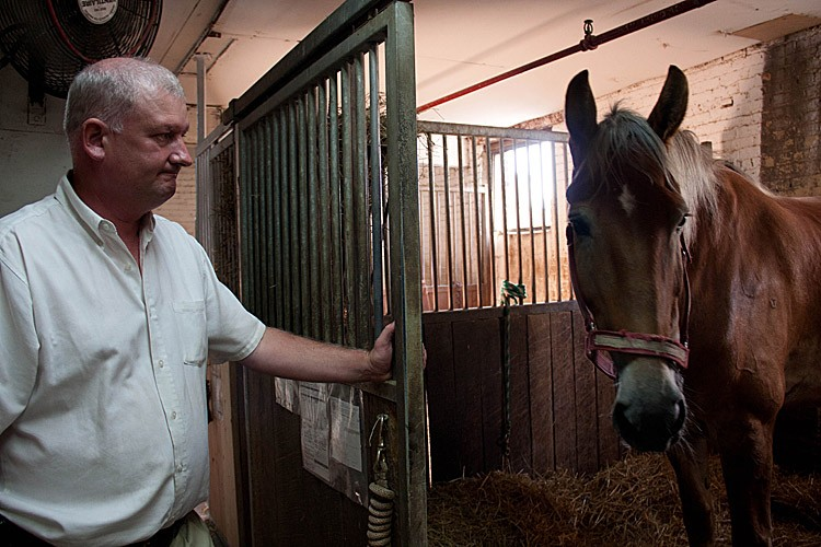 ON THE JOB: Stable manager and horse-drawn carriage driver Conor McHugh stands with a carriage horse in Clinton Park Stable on West 52nd Street. (TARA MacISAAC/THE EPOCH TIMES)