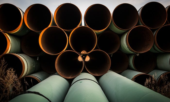 Miles of unused pipe, prepared for the proposed Keystone XL pipeline, sit in a lot on Oct. 14, 2014, outside Gascoyne, North Dakota. (Andrew Burton/Getty Images)