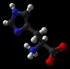 (Histidine as seen by a chemist)
