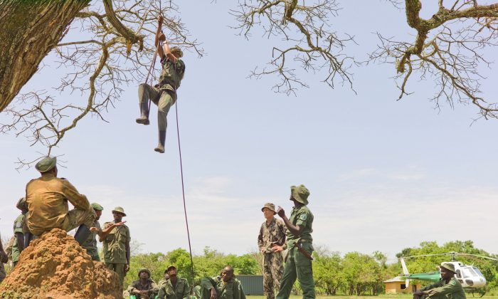The elite rapid response team members perform rope training to ascend and descend from a helicopter at the Garamba National Park, Congo, on Dec. 29, 2014. A shootout last month, in which three rangers and a Congolese army colonel were killed, highlighted the challenge of protecting parks in a part of Africa plagued for decades by insurgencies, civil war, refugee flows and weak governments. It shows how some conservation efforts resemble a kind of guerrilla warfare in which rangers and soldiers stalk, and are stalked by, poachers who are slaughtering elephants and other wildlife. (Karen Lubbe/African Parks via AP)