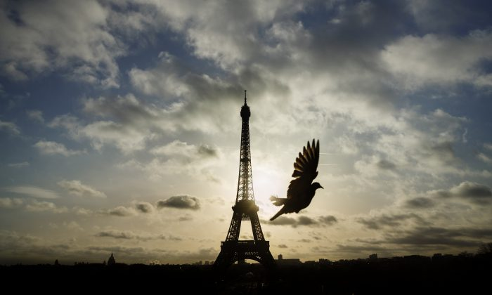 A bird flies in front of the Eiffel Tower on Nov. 15, which remained closed on the first of three days of national mourning following a series of terrorist attacks in Paris. (AP Photo/Daniel Ochoa de Olza)