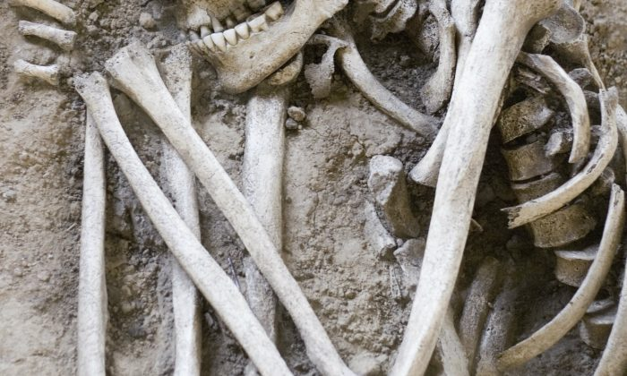 A file photo of a skeleton (Winterling/iStock)