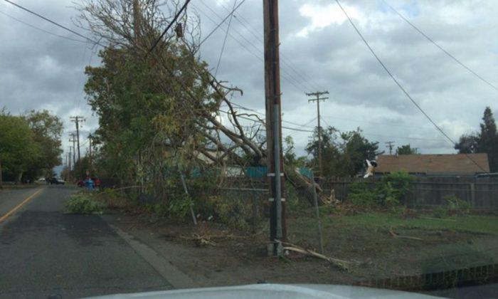 A tornado reportedly hit Denair, California, on Sunday (Stanislaus County Sherrif's Department)