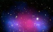 Tons of Dark Matter Hide in Nearby Dwarf Galaxy