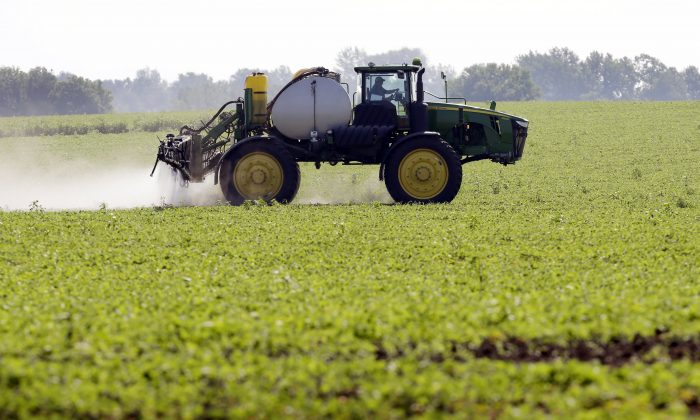 FILE - This July 11, 2013, file photo shows Blake Beckett of West Central Cooperative as he sprays a soybean field, in Granger, Iowa. Faced with tougher and more resistant weeds, corn and soybean farmers are anxiously awaiting government decisions on a new version of a popular herbicide _ and on genetically modified seeds to grow crops designed to resist it. (AP Photo/Charlie Neibergall, File)