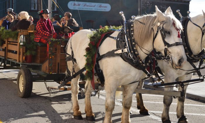 Carriage ride at Christkindlmarkt in Port Jervis on Nov. 29, 2015. (Yvonne Marcotte/Epoch Times)