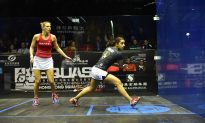 Hong Kong Squash Open 2015, Semi-finals