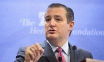Cruz Seeks to Turn Irascible Personality to His Advantage