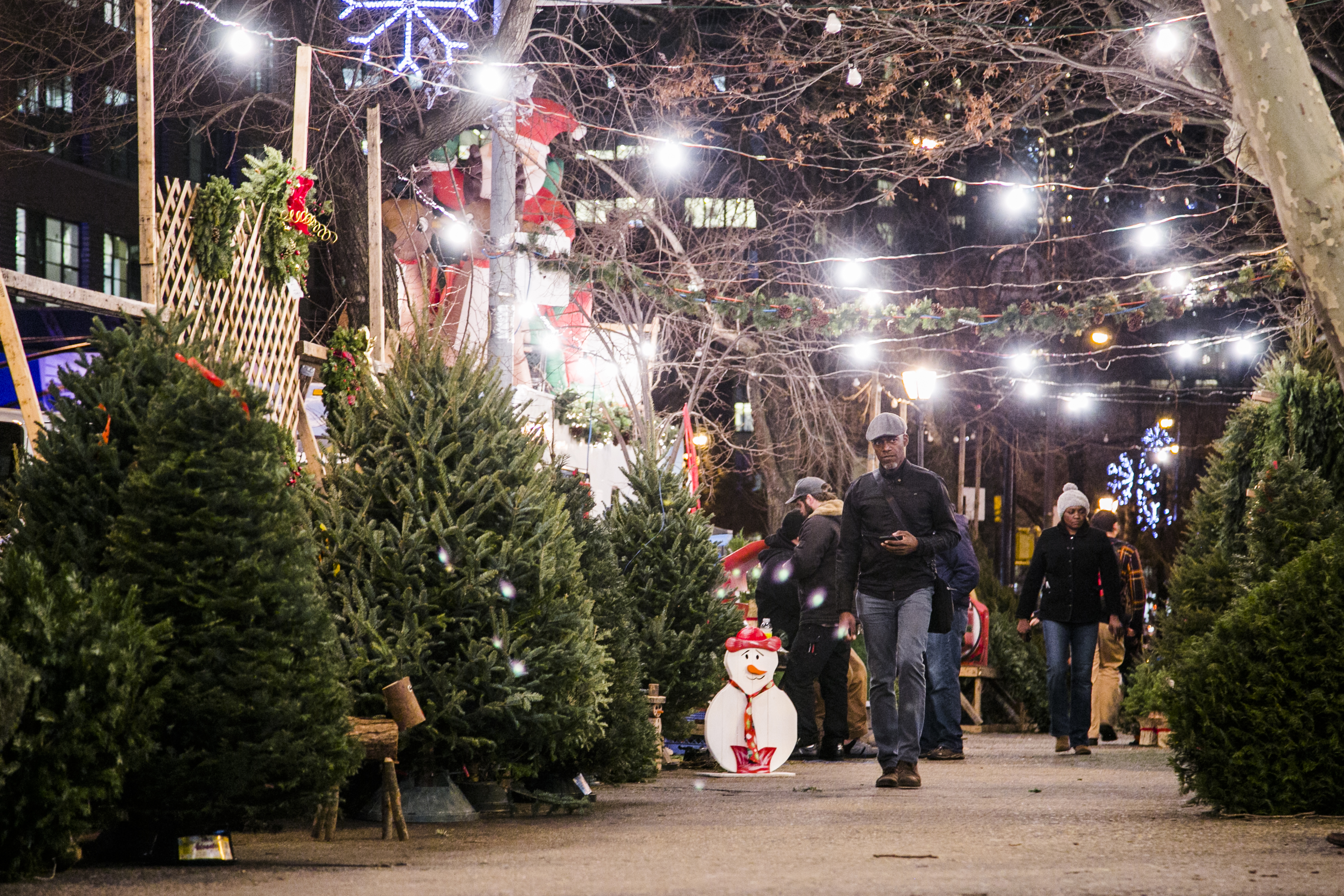 Christmas Tree In Nyc.A Peek Behind The Curtain At New York S Christmas Tree Trade