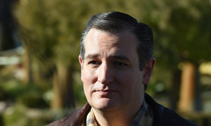 Republican presidential candidate Sen. Ted Cruz (R-Texas) speaks with reporters before a campaign rally at the Siena Community Center in Las Vegas, Nev., on Dec. 17, 2015. (Ethan Miller/Getty Images)