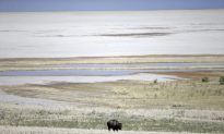 Northern Part of Great Salt Lake Hits Historic Low Level