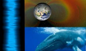 Sounds in Space Resemble Humpback Whales: Listen Here