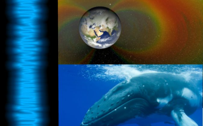 "Left: The waves of the ""song"" captured by NASA probes in the Van Allen belts on Sept. 5, 2012. (NASA) Top right: An artist's depiction of the Van Allen belts surrounding Earth. Bottom right: A humpback whale. (Miblue5/iStock)"