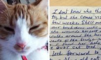 Cat Returns Home From Wandering With a Note Explaining Its Whereabouts