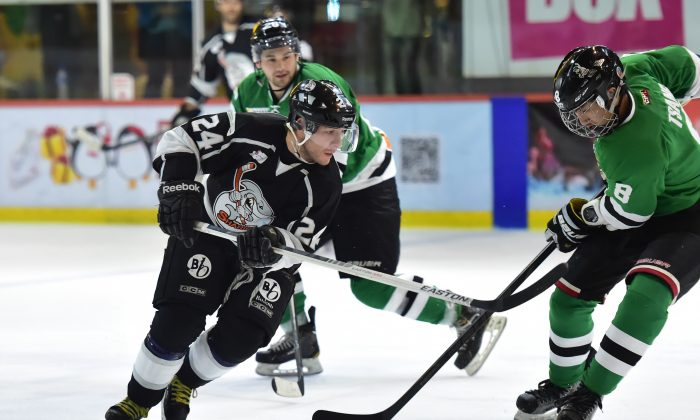 Kirk Golden of South China Sharks shirt number 24 is the CIHL leading player at the end of year break with 30points playing against Macau Aces in their match on Dec 3, 2015. (Bill Cox/Epoch Times)