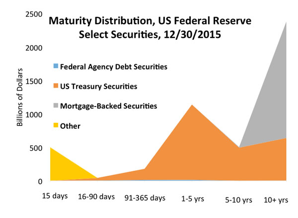 Gray area: The 2007-2008 debt crisis prompted the U.S. Federal Reserve to try new ways to encourage spending and investment; adding mortgage-backed securities to the balance sheets increased the central bank's holdings that mature in 10 years or more (Federal Reserve data)