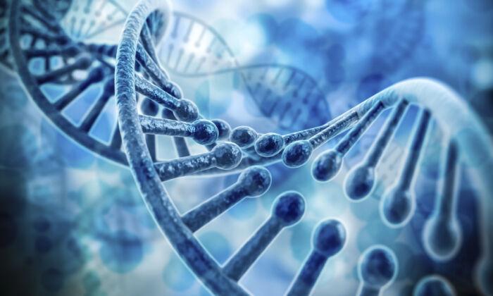 DNA double helix. (Digitalgenetics/istock)