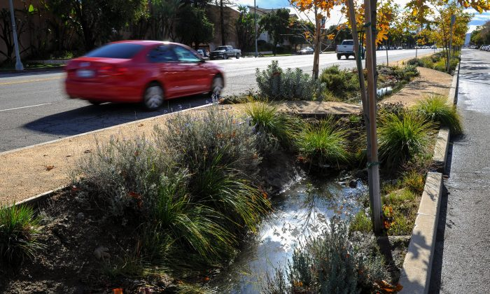 Cars drive on Woodman Avenue in Panorama City, Calif., Thursday, Jan. 7, 2016, along a culvert where rainwater runoff is directed to a leach field on the side of the street. (AP Photo/Michael Owen Baker)