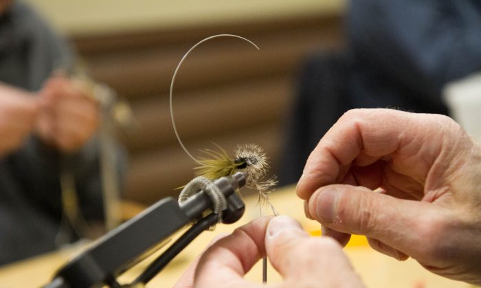 A close up of a  fishing fly being made at the Cornell Cooperative Extension Orange County's 4-H fly-tying program at Gander Mountain in Middletown on Jan. 7, 2016. (Holly Kellum/Epoch Times)