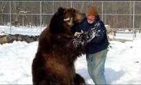 Watch This Wildlife Worker Hug a 1,500 Pound Kodiak Bear (Video)