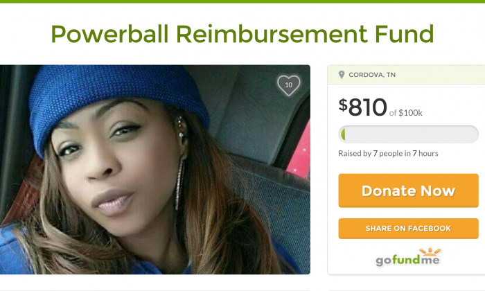 Screenshot of the now-deleted GoFundMe Page for Cinnamon Nicole, who'd spent all of her savings on Powerball tickets.