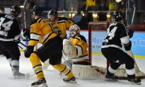 Sharks Falter To Tycoons, While Warriors Score Important Win Over Aces
